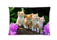 A-B-C-D-Cats-Facebook-Style-Pillowcase-Cover-20x30-one-side-Cotton-Pillow-Case-0