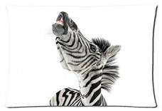 Beautiful-Zebra-Animals-Style-Pillowcase-Cover-20x30-one-side-Cotton-Pillow-Case-11-Pattern-0