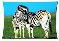 Beautiful-Zebra-Animals-Style-Pillowcase-Cover-20x30-one-side-Cotton-Pillow-Case-12-Pattern-0