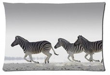 Beautiful-Zebra-Animals-Style-Pillowcase-Cover-20x30-one-side-Cotton-Pillow-Case-15-Pattern-0