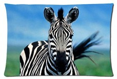 Beautiful-Zebra-Animals-Style-Pillowcase-Cover-20x30-one-side-Cotton-Pillow-Case-21-Pattern-0