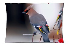 Bohemian-Waxwing-Style-Pillowcase-Cover-20x30-one-side-Cotton-Pillow-Case-0