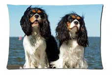 Cavalier-King-Charles-Spaniels-Style-Pillowcase-Cover-20x30-one-side-Cotton-Pillow-Case-0
