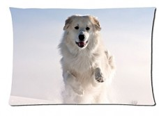 White-dog-running-in-the-snow-Style-Pillowcase-Cover-20x30-one-side-Cotton-Pillow-Case-0